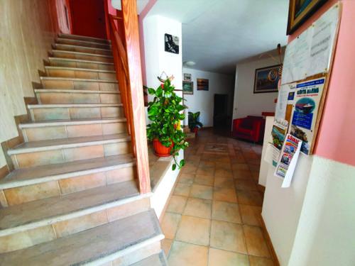 Hotel nel centro storico di Vieste sul Gargano - Hotel Punta San Francesco - entrrata - 02